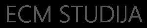 Jaunesniojo (-iosios) front-end programuotojo (-os) praktika ir naudotojo sąsajų projektuoto (-os) praktika